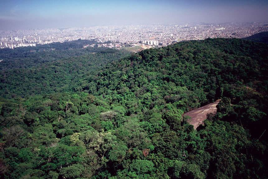 Pedra Grande, Parque Estadual da Cantareira